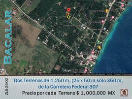 Foto de terreno comercial en venta en s/n , aarón merino [colonia], bacalar, quintana roo, 0 No. 01